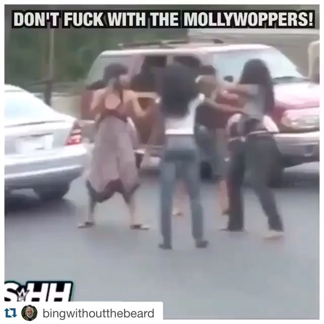 #Repost @bingwithoutthebeard ・・・ #mollywoppersnyb Meeting tonight 730 pm at omalley club... Bring theme ideas if you have any. Also the Murray comic club is having their banquet at the sugar house this year on Saturday April 2, this is when we get our trophy. Tickets are $55 includes food and drink. Bring money if you're interested in going, as well as any donations for the silent auction they're having. 🎥cred: @braxknuckles